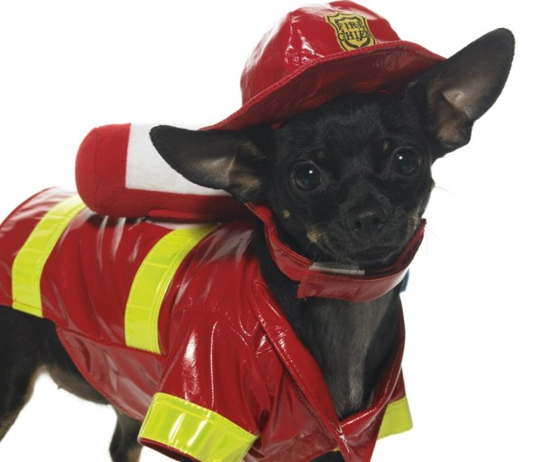 Fire-Dog-Costume-halloween